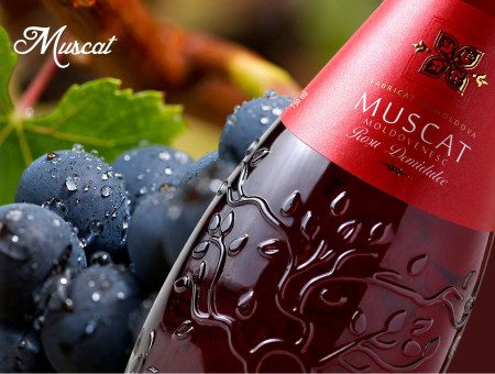 Muscat Semi-Sweet Wine